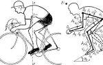 Правильная посадка — всё о велоспорте