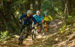 Экология в туризме — всё о велоспорте