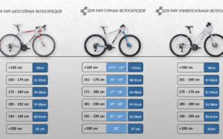 Размер колес велосипеда и их особенности — всё о велоспорте