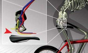 Почему болит попа и копчик после велосипеда — всё о велоспорте