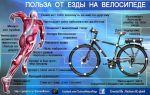 Какой оптимальный пульс при езде на велосипеде и почему это важно — всё о велоспорте