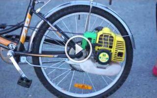 Взрослые велосипеды с коляской — всё о велоспорте