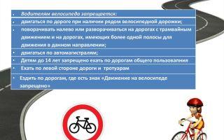 Со скольки лет можно кататься на велосипеде — всё о велоспорте