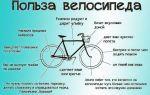 Как устроены лежачие велосипеды: плюсы и минусы конструкции — всё о велоспорте