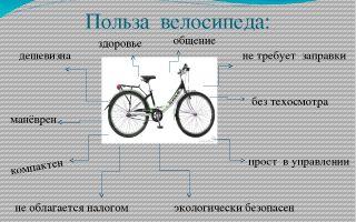 Как езда на велосипеде влияет на фигуру — всё о велоспорте