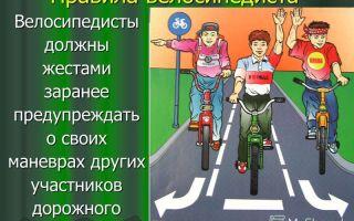 Права и обязанности велосипедиста на дороге в соответствии с пдд — всё о велоспорте
