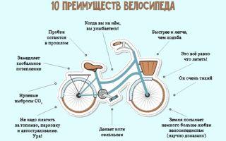 4 главных преимущества велосипеда перед машиной — всё о велоспорте