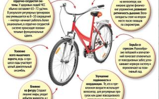 Что полезнее: бег или велосипед? — всё о велоспорте
