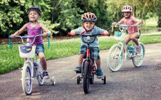 Обзор велосипедных джерси — всё о велоспорте