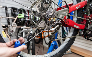 Как подготовить велосипед к сезону — всё о велоспорте