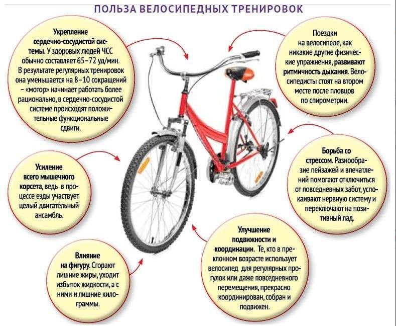 Велоспорт помогает похудеть